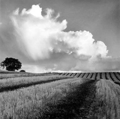 Large white cloud near Bilsington, Kent - by Fay Godwin